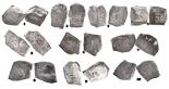 Mexico City, Mexico, cob 8 reales, Philip IV through V, various assayers (where visible).